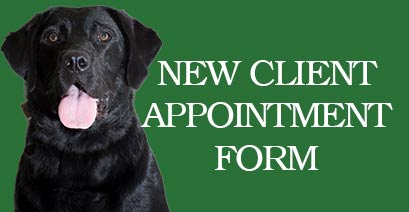 New Clients at Crystal Lake Veterinary Hospital, IL