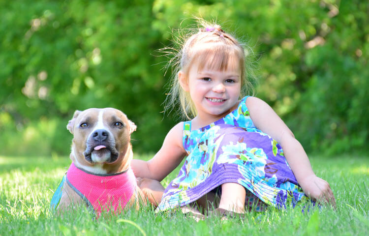 Animal Hospital in Crystal Lake, McHenry County IL